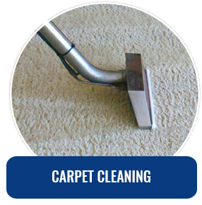 Carpet Cleaning Jersey City Nj Pros 201 781 2757 Rug